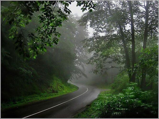 جاده عباس آباد در کلاردشت