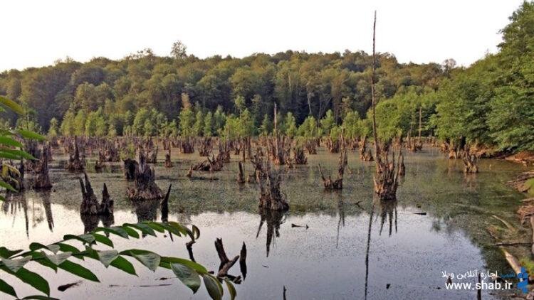 دریاچه ارواح، طبیعتی بکر در آغوش جنگلهای شمال