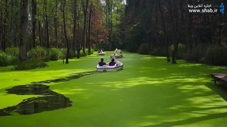 پارک تفریح و خوش گذرانی در پارک جنگلی سراوان