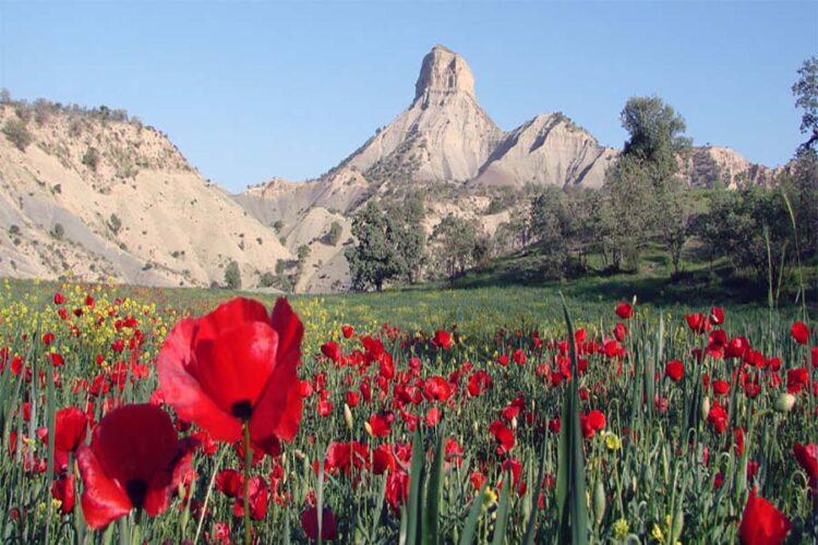 کوه قلاقیران ایلام