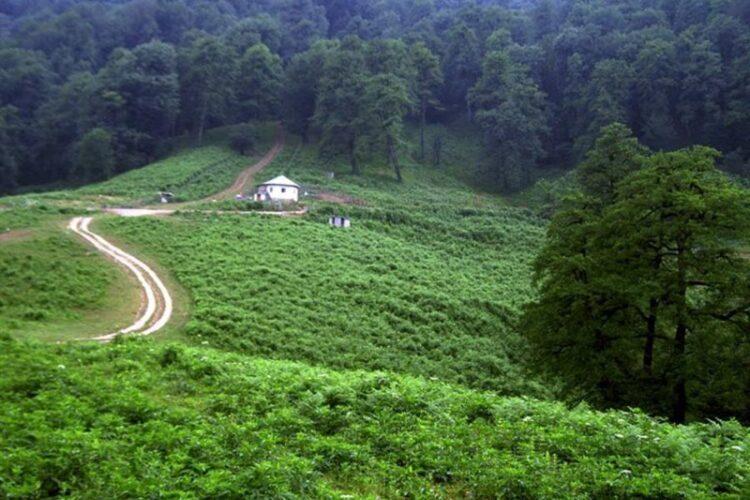 سفر به رامسر - روستای گرسماسر