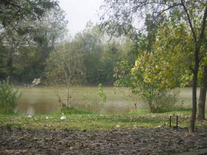 پارک جنگلی کیاشهر در آستانه اشرفیه