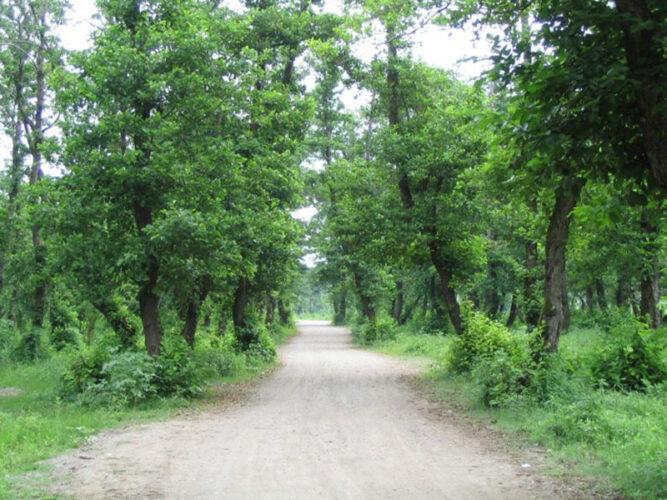 پارک و روستای تاریخی صفرا بسته در آستانه اشرفیه