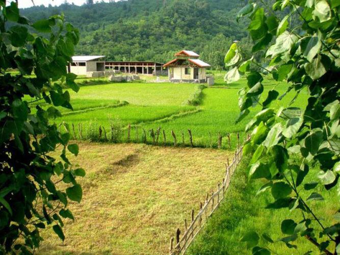 تصویری از روستای فوشه در فومن