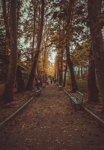 اطراف تهران در پاییز کمپ